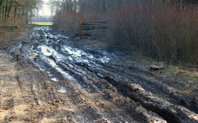 Nieutwardzona droga gminna zniszczona podczas wywozu drewna