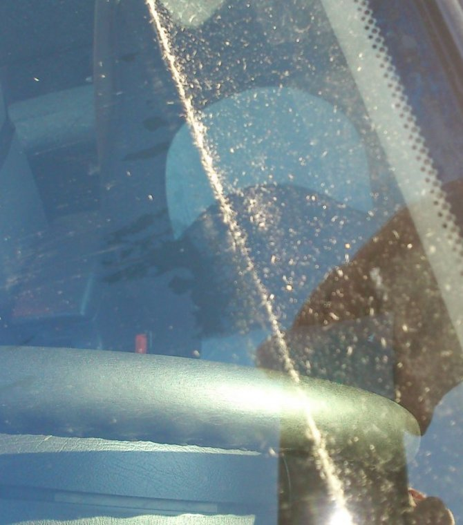 Pył drzewny na szybie samochodu po kilkugodzinnym postoju na parkingu w Szczecinku