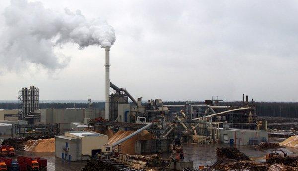 Fabryka płyt drewnopochodnych na Białorusi