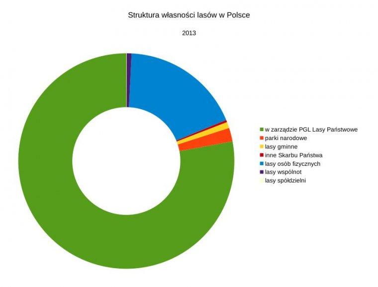 Struktura własności lasów w Polsce 2013