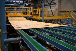 Linia produkcji forniru w Czarnej Wodzie