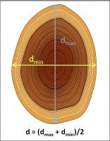 Sposób pomiaru średnicy drzew o spłaszczonym przekroju pnia