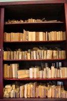 Ksyloteka profesora Rafalskiego obejmuje ponad 5 tysięcy próbek drewna eksponowanych w takich zabytkowych witrynach.
