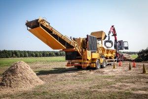 EKO-LAS odsłania potencjał branży leśnej i przemysłu drzewnego