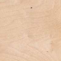 Brzoza europejska - Drewno brzozy brodawkowatej