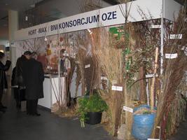 <center>Stoisko BNI - Konsorcjum OZE</center>