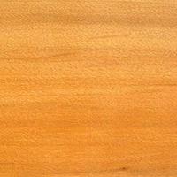 Drewno wierzby
