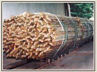 <center>Nasycanie drewna</center>