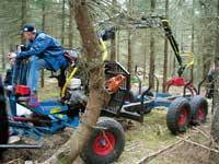 Przyczepka z żurawiem do zrywki konnej. Szwecja, 2007 r.