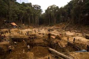 Poszukiwacze złota powodują znaczne szkody w peruwiańskich lasach