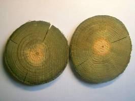 Podczas impregnacji ciśnieniowej zabezpieczona zostaje część bielasta drewna