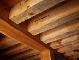 Elementy drewniane zaatakowane przez owady –  techniczne szkodniki drewna