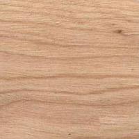 Drewno brzozy amerykańskiej