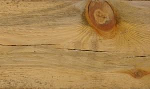 Smuga sinizny rozwijająca się od miejsca uszkodzenia pnia