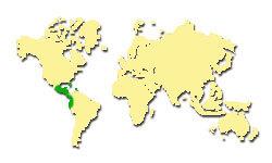 Zasięg występowania Mahoń amerykański