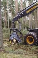 Na terenie gminy funkcjonuje 18 przedsiębiorstw realizujących prace z zakresu usług leśnych