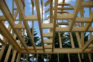 Budownictwo z drewna jest szybkie i przyjazne środwisku naturalnemu