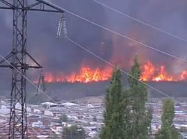 Pożar lasu na przedmieściach Woroneża