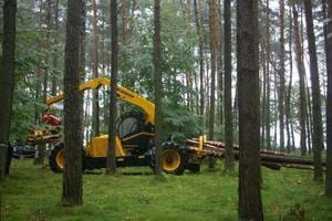 Highlander świetnie radzi sobie z pozyskaniem i zrywką drewna o dużych średnicach