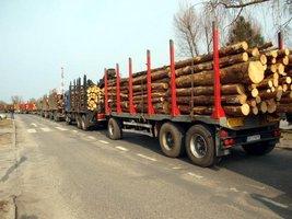 Ok. 80 ciężarówek wzięło udział w poniedziałkowym proteście w Kwidzyniu