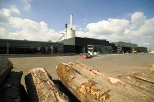 Tartaki firmy Pollmeier należą do najnowocześniejszych w Europie. Na zdjęciu tartak w Aschaffenburgu