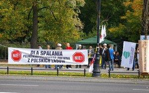 NIE dla spalania pełnowartościowego drewna z polskich lasów
