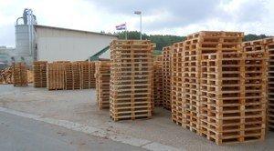 Produkcja palet i brykietu w firmie Koscal