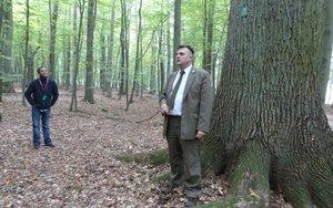 Robert Wójcik - Nadleśniczy Nadleśnictwa Gryfino