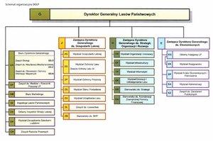 Nowy schemat organizacyjny DGLP