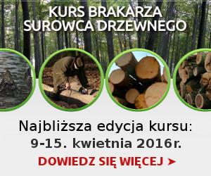 Kurs brakarski drewna okrągłego