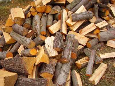 drewno tartaczne olcha,brzoza sosna od 120 zł m 3