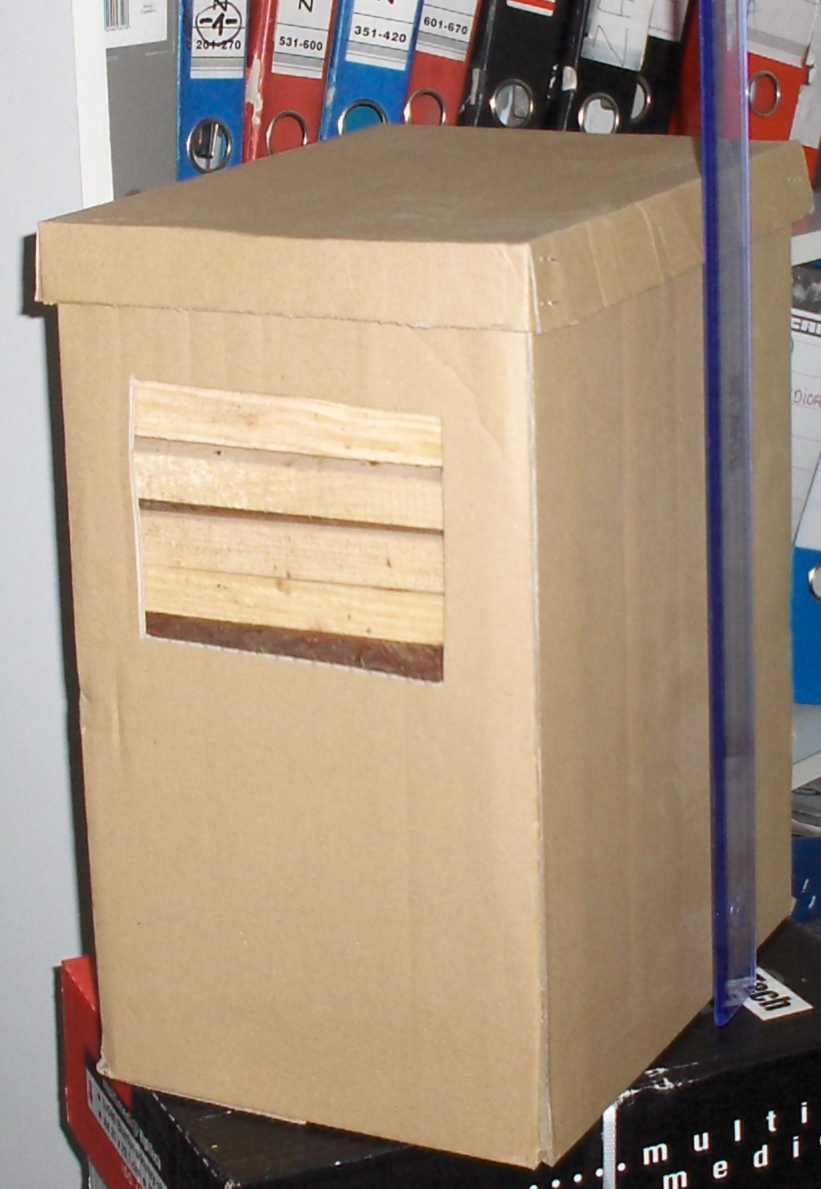 rozpałka sosnowa 6kg w kartonie
