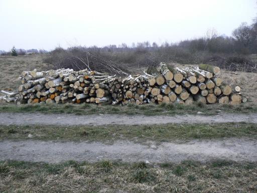 Sprzedam dużą ilość olchy i brzozy na drewno komin