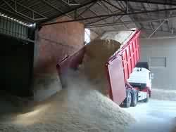 Krajowy producent BIOMASY kupi trocinę,pył drzewny