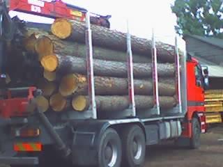 sam do transportu drewna