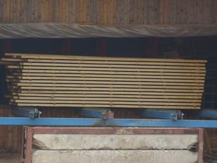 tarcica (sosnowa, cwierkowa)