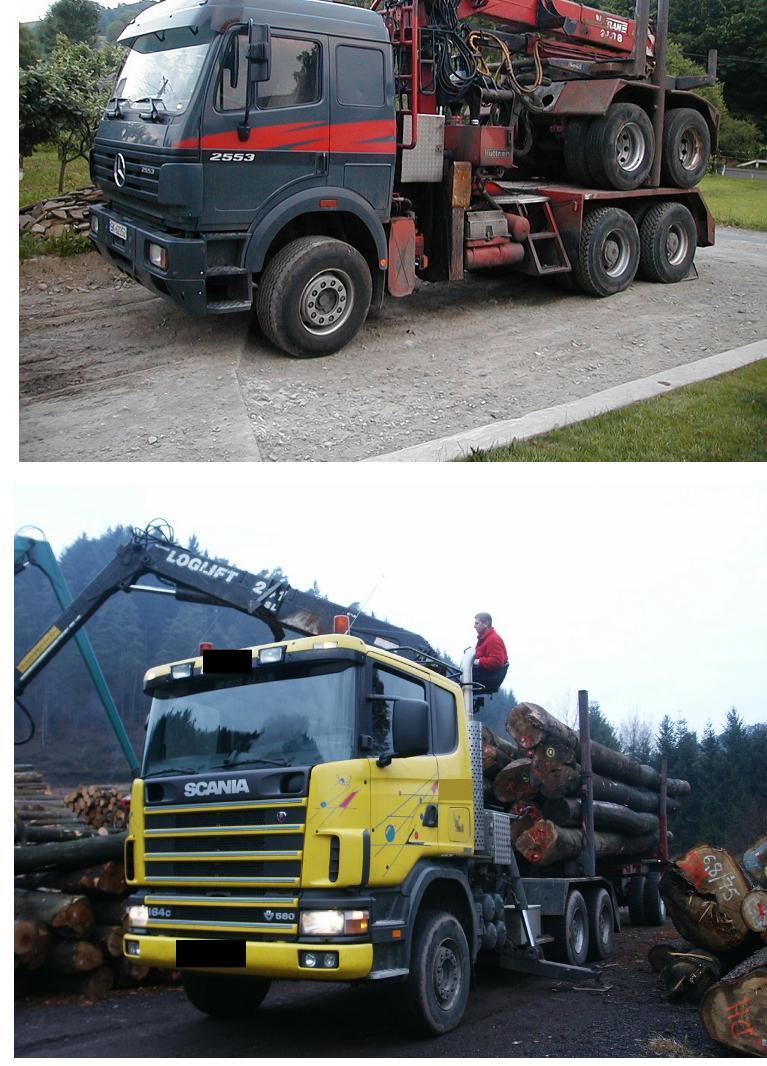 Usługi transportowe drewna