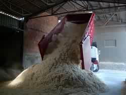 Poszukujemy dostawców biomasy- trociny suche
