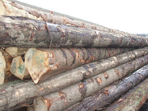 Sprzedam drewno świerkowe!!!