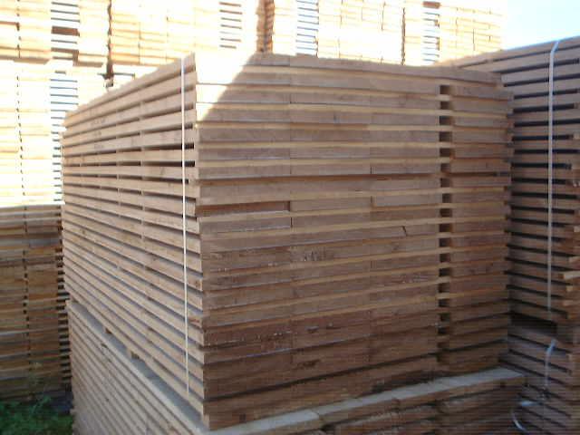 Export do Belgii Tarcica dębowa obrzyn. mokra