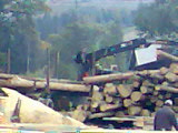Drewno Tartaczne