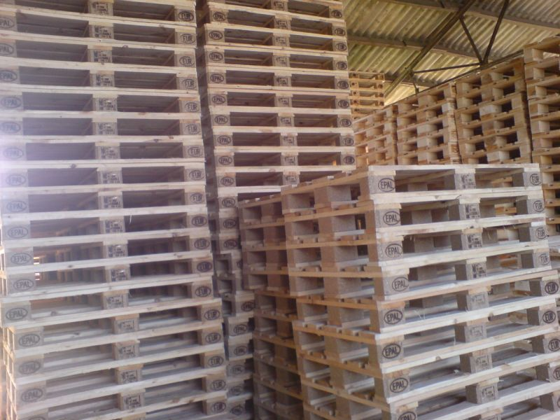 Nowe Epal fitosanitarne