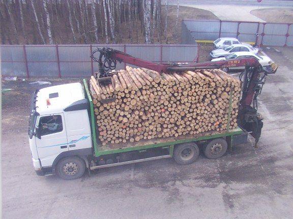 ciężarówka leśna - VOLVO