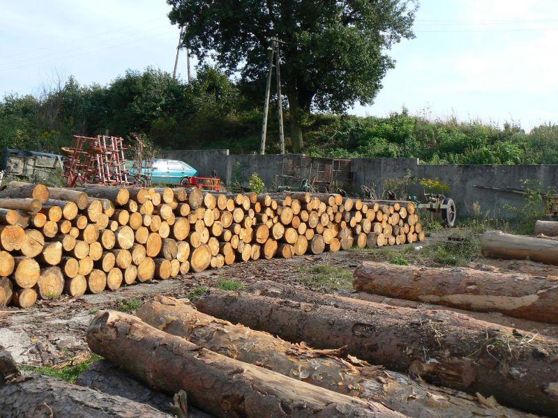 Sprzedam drewno opałowe lub na palety so św grubość od 14cm wzwyż dł.1,2m+