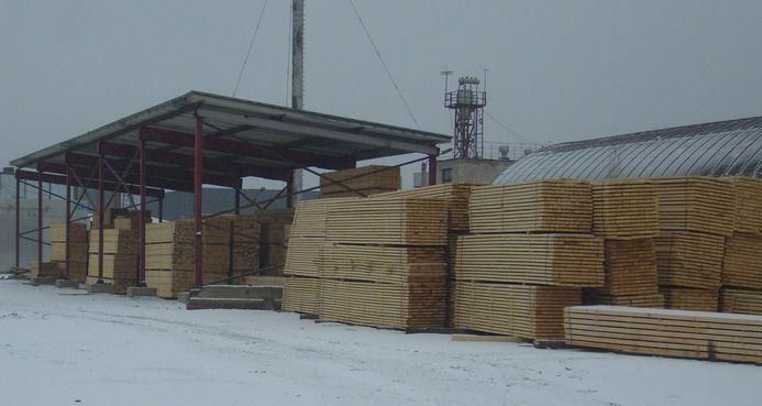 Siberian Larch, Pine , Spruce.