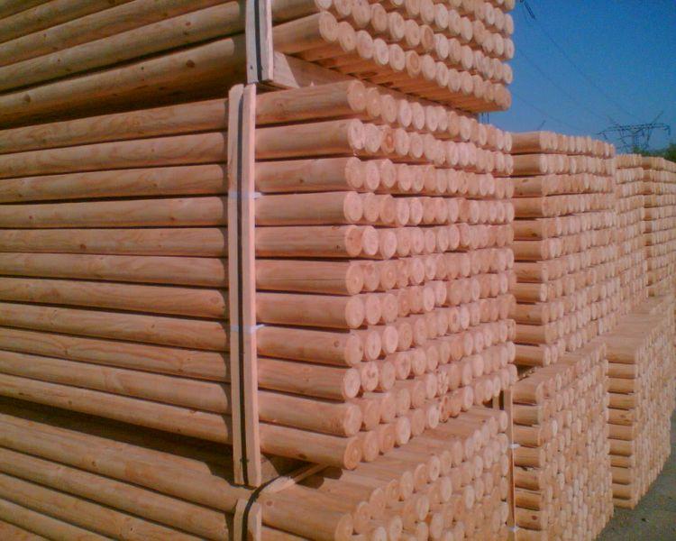 Palisada drewniana, pale korowamne
