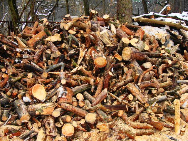 Sprzedaz drewna