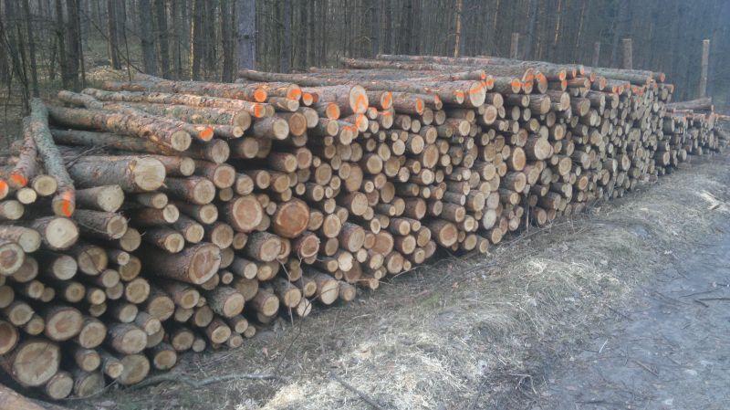 SPRZEDAM drewno sosnowe s2a, s2ap