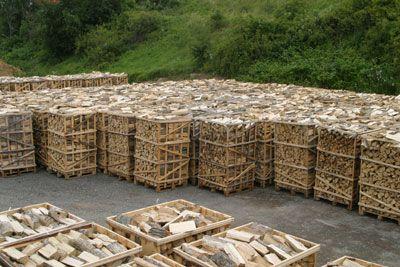 Drewno kominkowe suszone BUK
