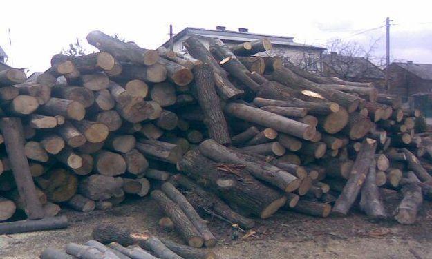 Drewno kominkowe  Szczecin Wałcz  Drawno Gorzów